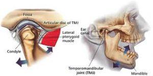 purenta fysioterapeutti - hieroja